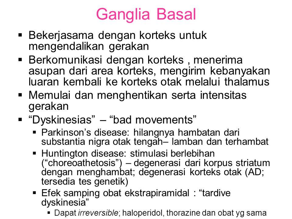 Ganglia Basal Bekerjasama dengan korteks untuk mengendalikan gerakan