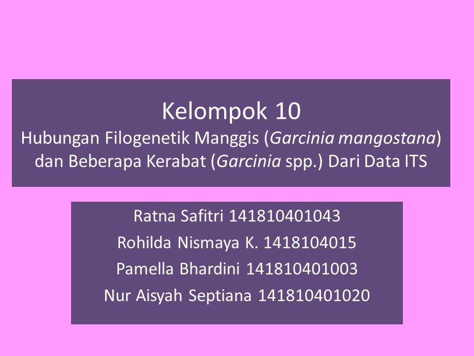 Kelompok 10 Hubungan Filogenetik Manggis (Garcinia mangostana) dan Beberapa Kerabat (Garcinia spp.) Dari Data ITS