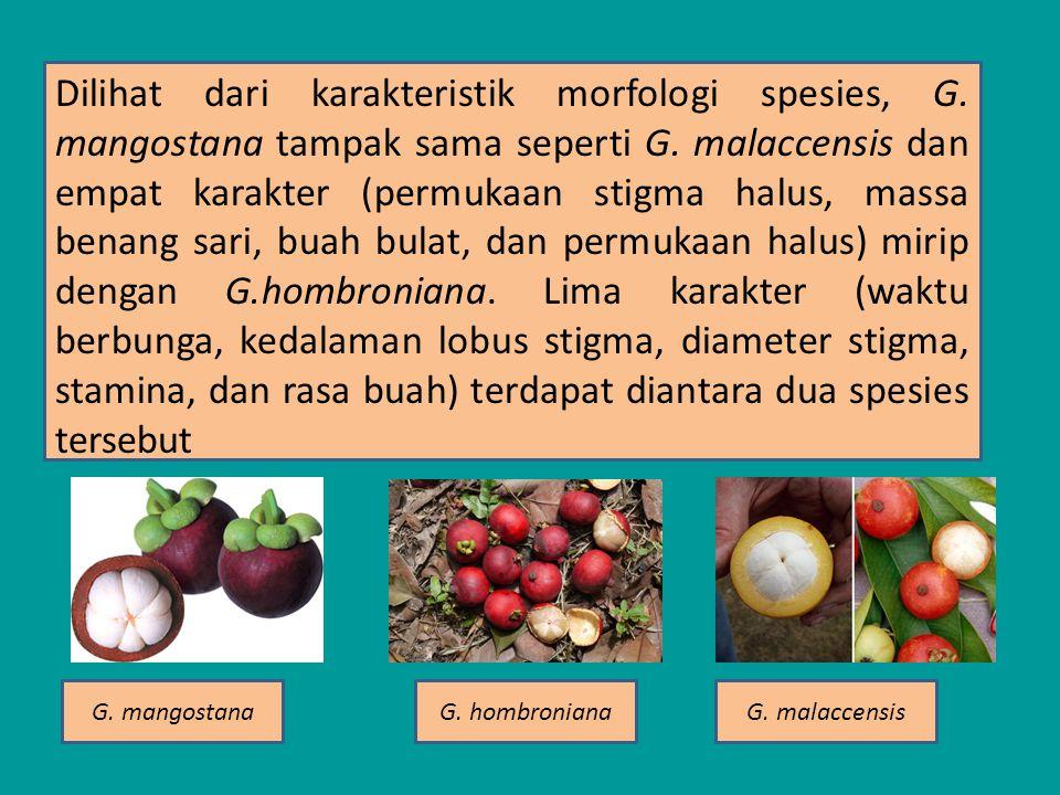 Dilihat dari karakteristik morfologi spesies, G