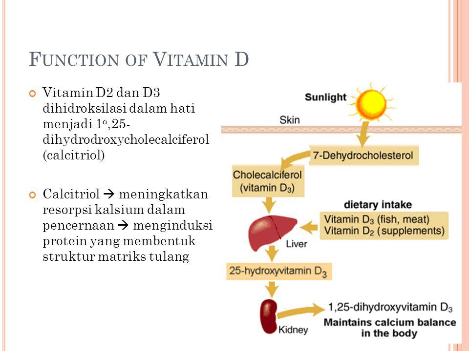 Function of Vitamin D Vitamin D2 dan D3 dihidroksilasi dalam hati menjadi 1α,25- dihydrodroxycholecalciferol (calcitriol)