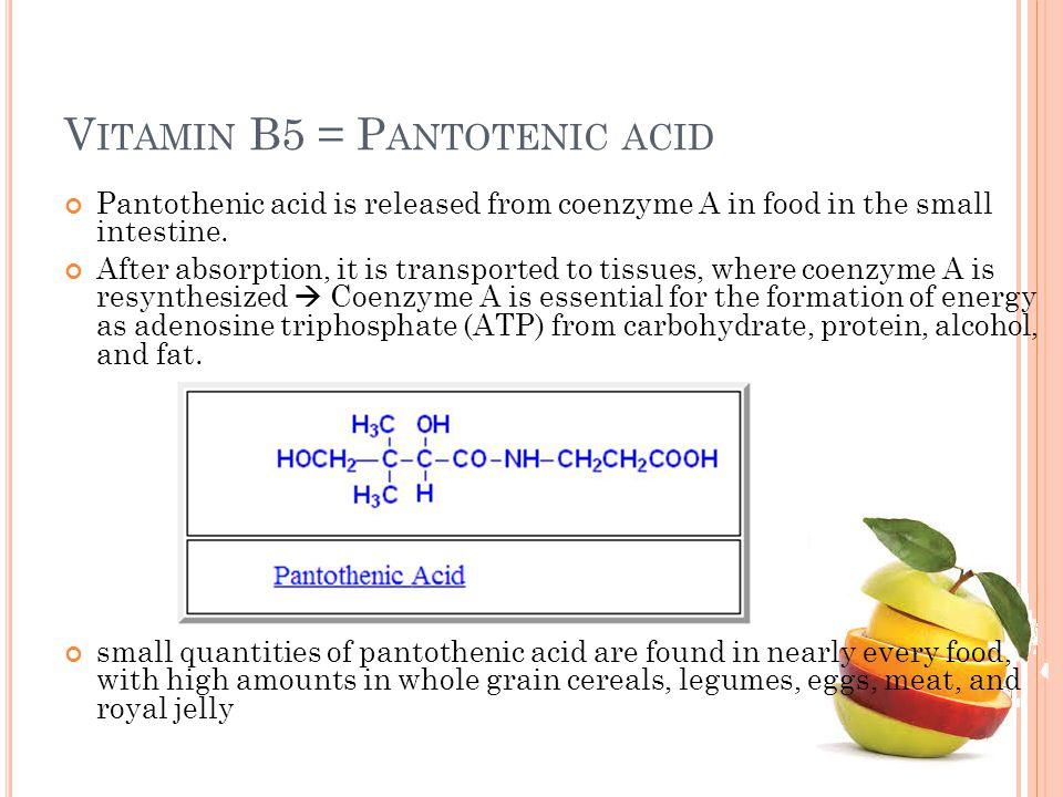 Vitamin B5 = Pantotenic acid