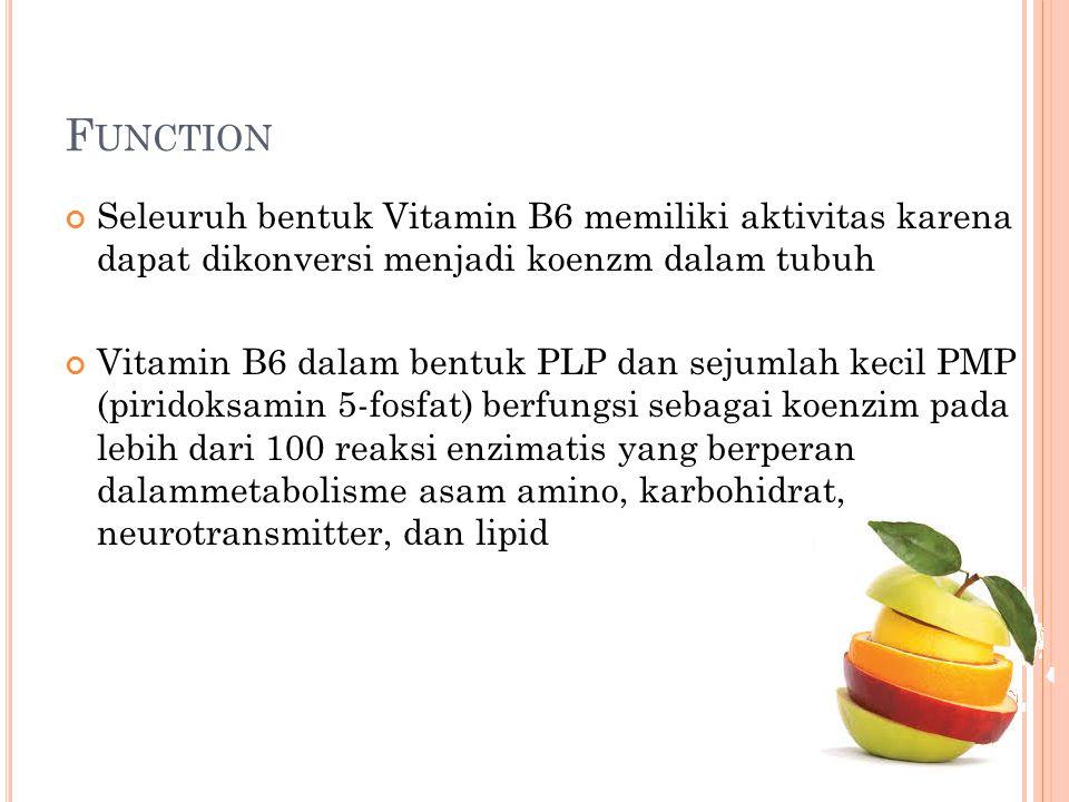 Function Seleuruh bentuk Vitamin B6 memiliki aktivitas karena dapat dikonversi menjadi koenzm dalam tubuh.