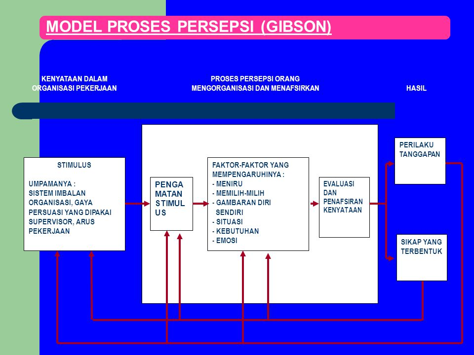 MODEL PROSES PERSEPSI (GIBSON)