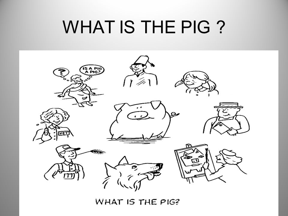 WHAT IS THE PIG