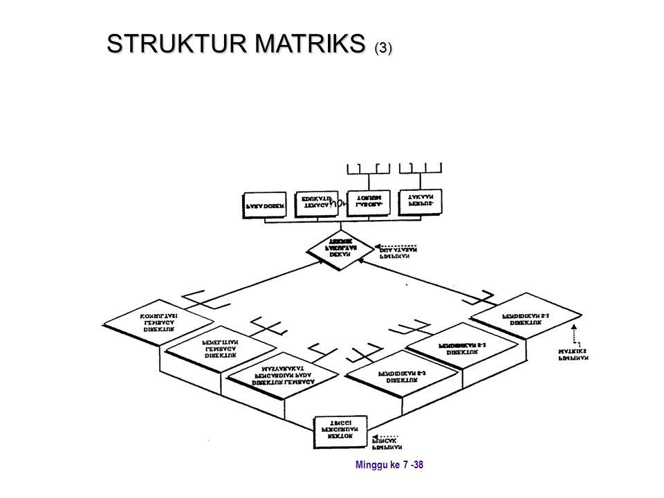 STRUKTUR MATRIKS (3)