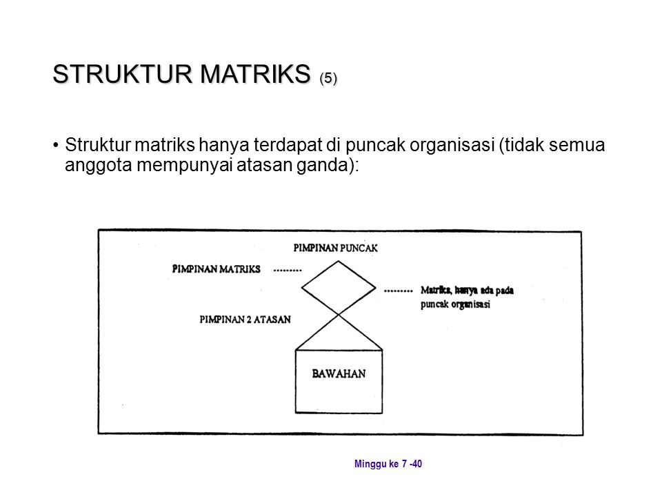 STRUKTUR MATRIKS (5) Struktur matriks hanya terdapat di puncak organisasi (tidak semua anggota mempunyai atasan ganda):