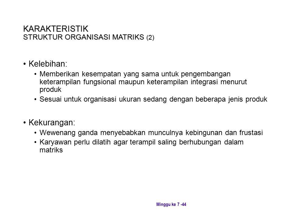 KARAKTERISTIK STRUKTUR ORGANISASI MATRIKS (2)