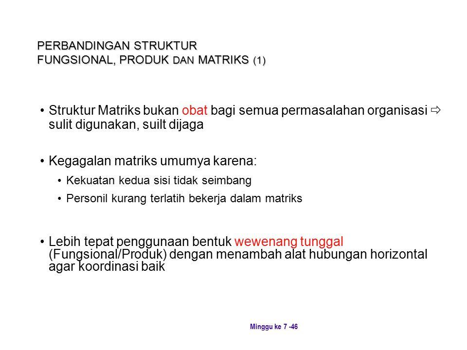 PERBANDINGAN STRUKTUR FUNGSIONAL, PRODUK DAN MATRIKS (1)