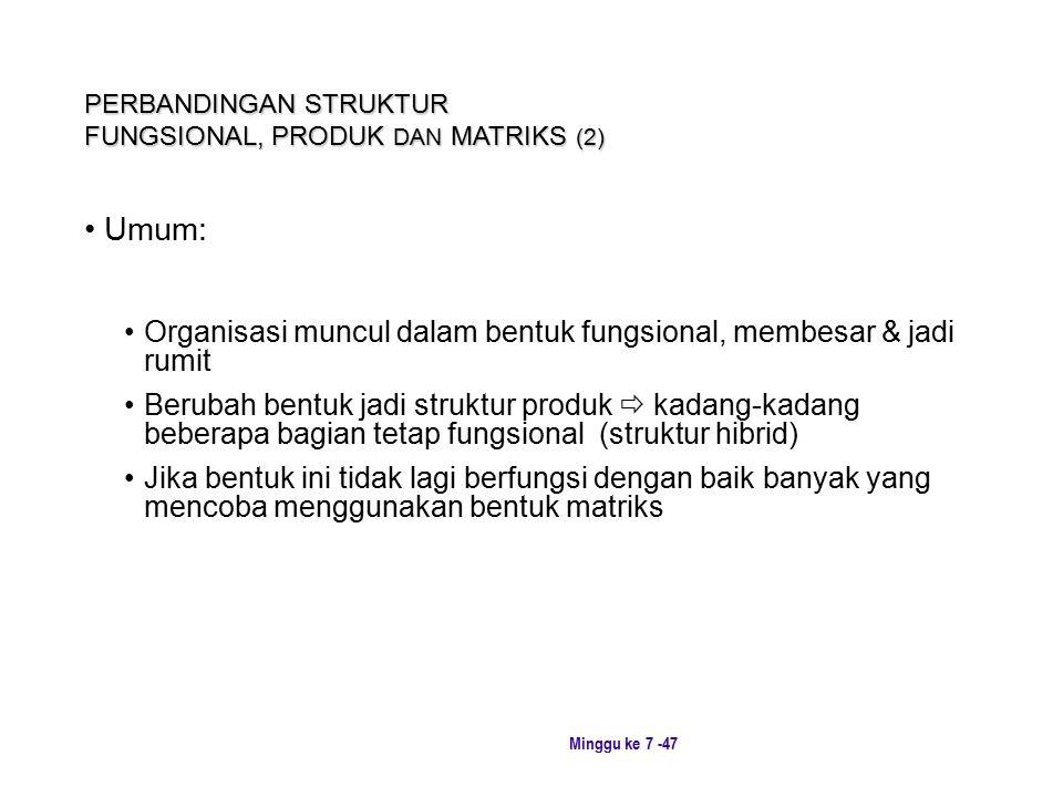 PERBANDINGAN STRUKTUR FUNGSIONAL, PRODUK DAN MATRIKS (2)