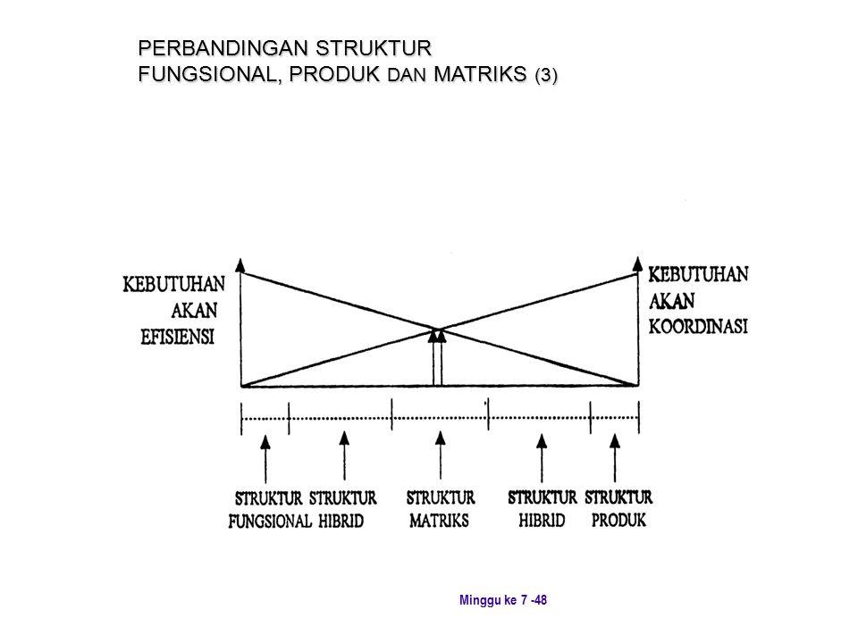 PERBANDINGAN STRUKTUR FUNGSIONAL, PRODUK DAN MATRIKS (3)