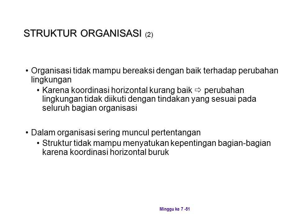 STRUKTUR ORGANISASI (2)
