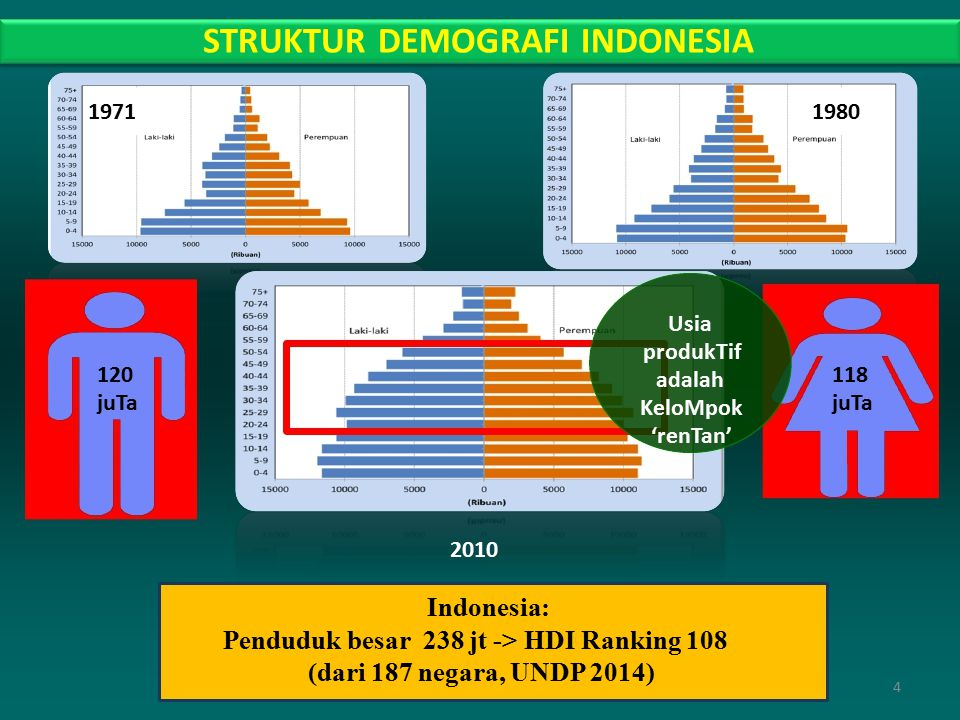 STRUKTUR DEMOGRAFI INDONESIA