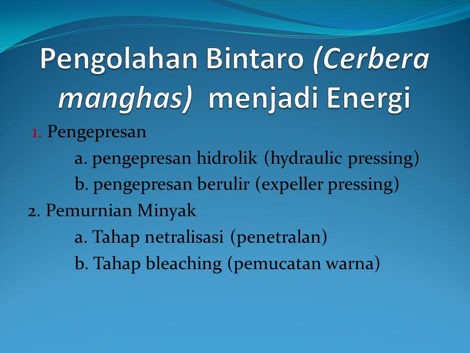 Pengolahan Bintaro (Cerbera manghas) menjadi Energi