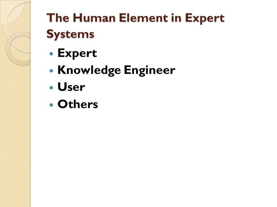 The Human Element in Expert Systems