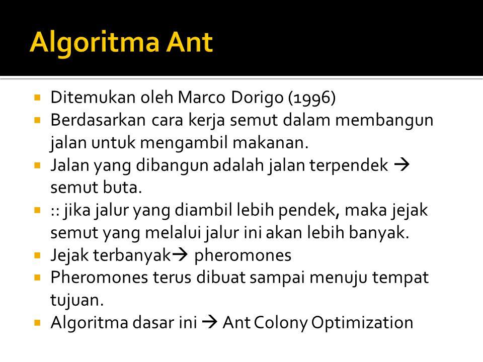 Algoritma Ant Ditemukan oleh Marco Dorigo (1996)