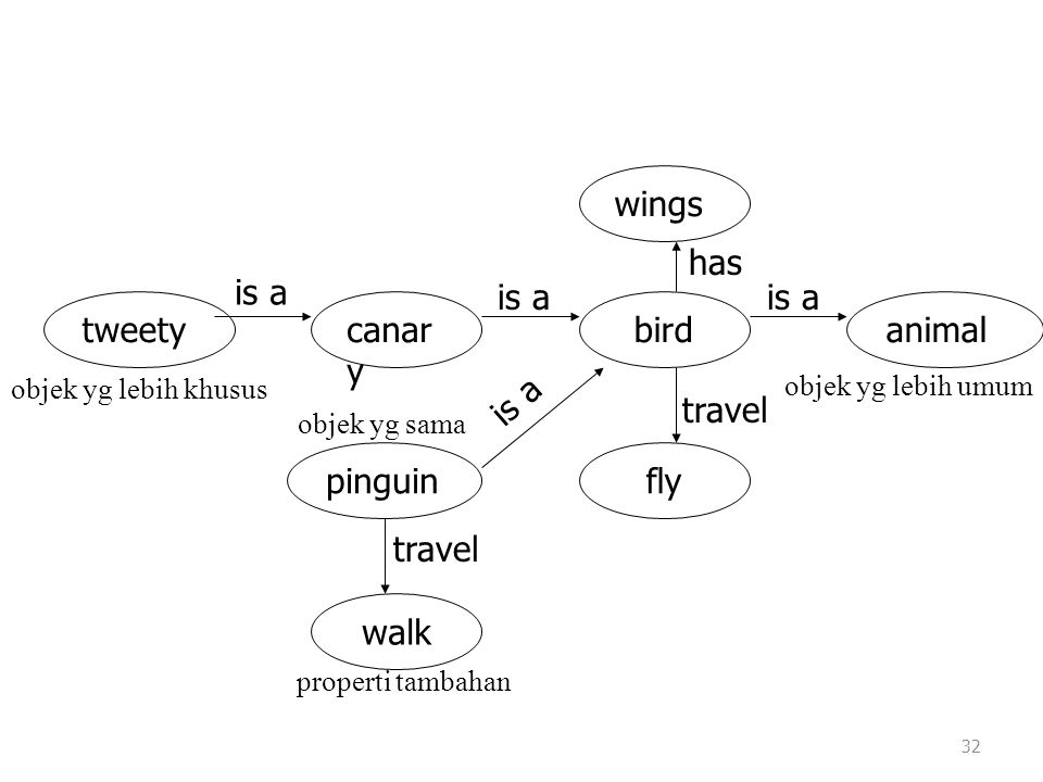 wings animal walk pinguin fly bird canary tweety is a travel has