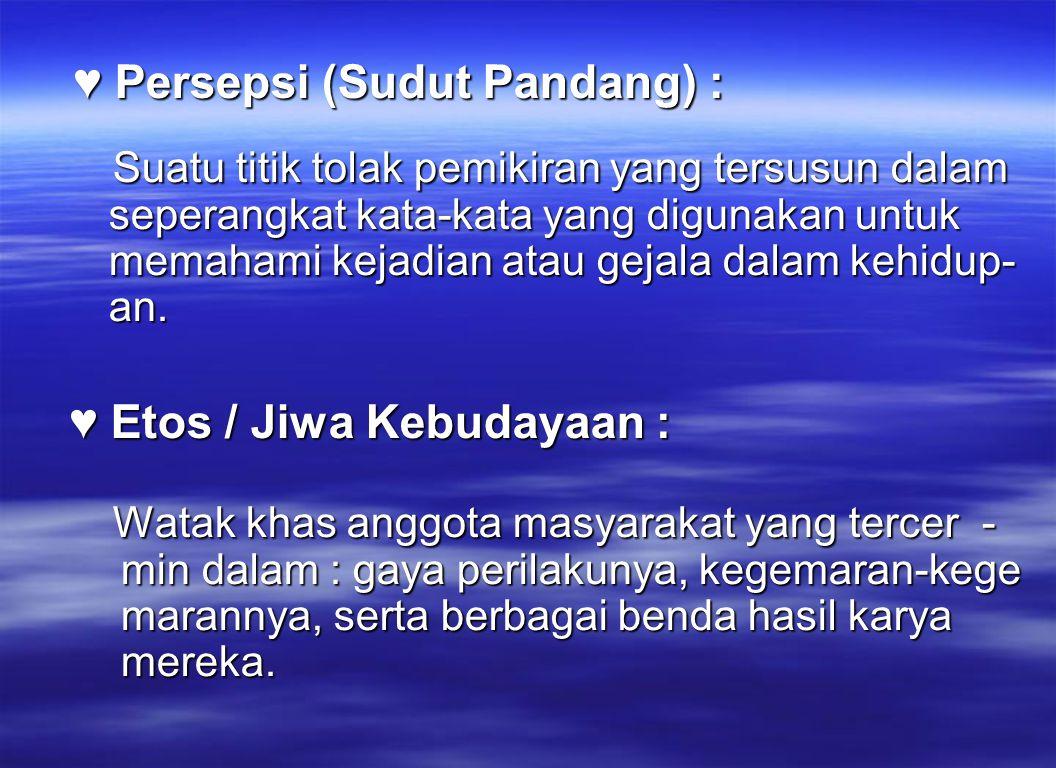 ♥ Persepsi (Sudut Pandang) :