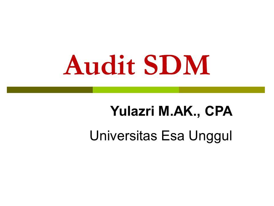 Audit SDM Yulazri M.AK., CPA Universitas Esa Unggul