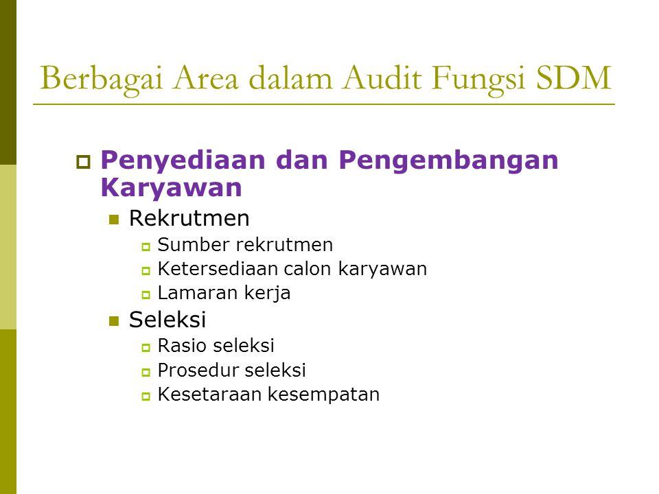 Berbagai Area dalam Audit Fungsi SDM