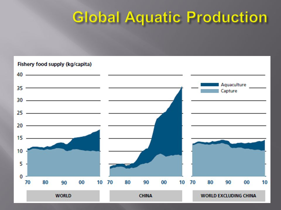 Global Aquatic Production