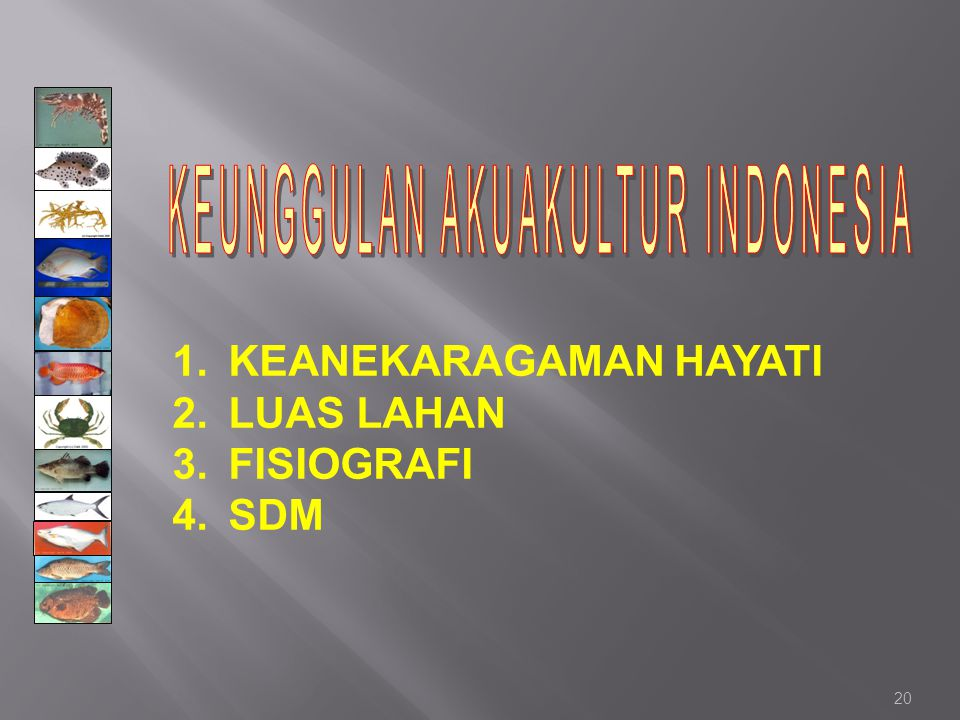 KEUNGGULAN AKUAKULTUR INDONESIA