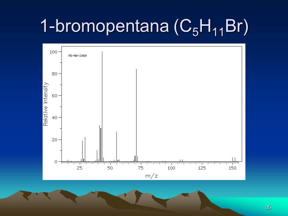 1-bromopentana (C5H11Br)