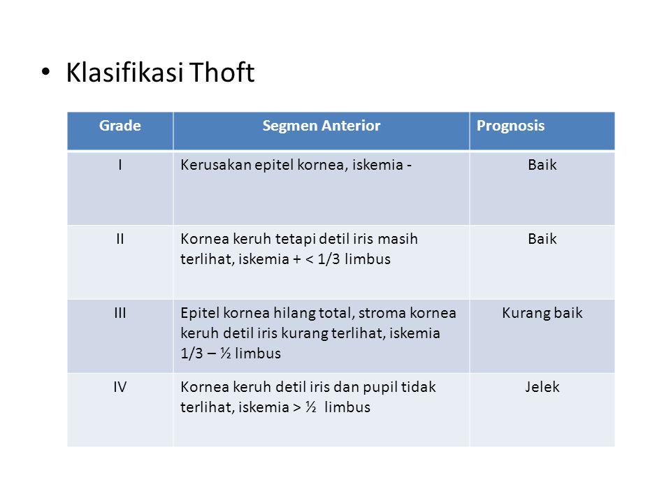 Klasifikasi Thoft Grade Segmen Anterior Prognosis I