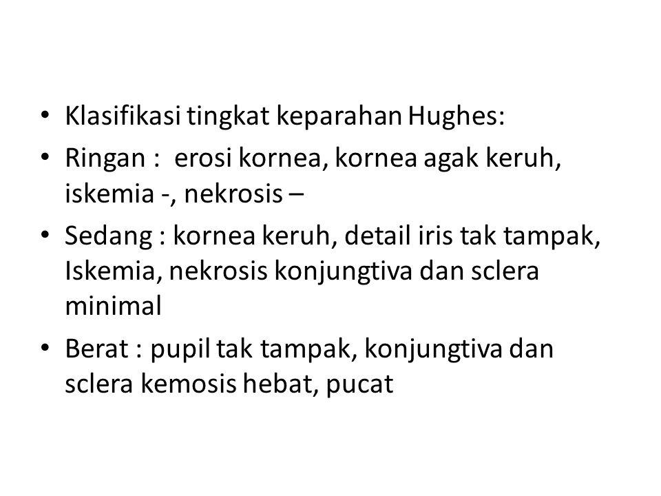Klasifikasi tingkat keparahan Hughes: