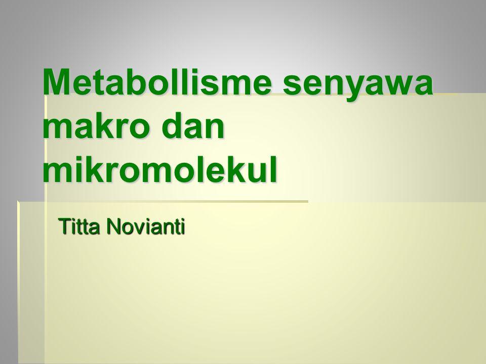 Metabollisme senyawa makro dan mikromolekul