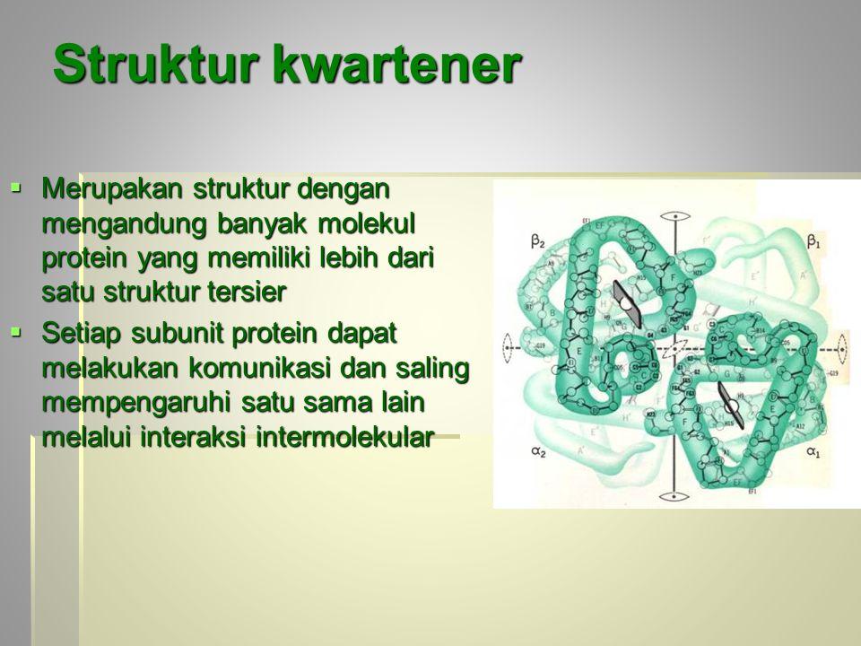 Struktur kwartener Merupakan struktur dengan mengandung banyak molekul protein yang memiliki lebih dari satu struktur tersier.
