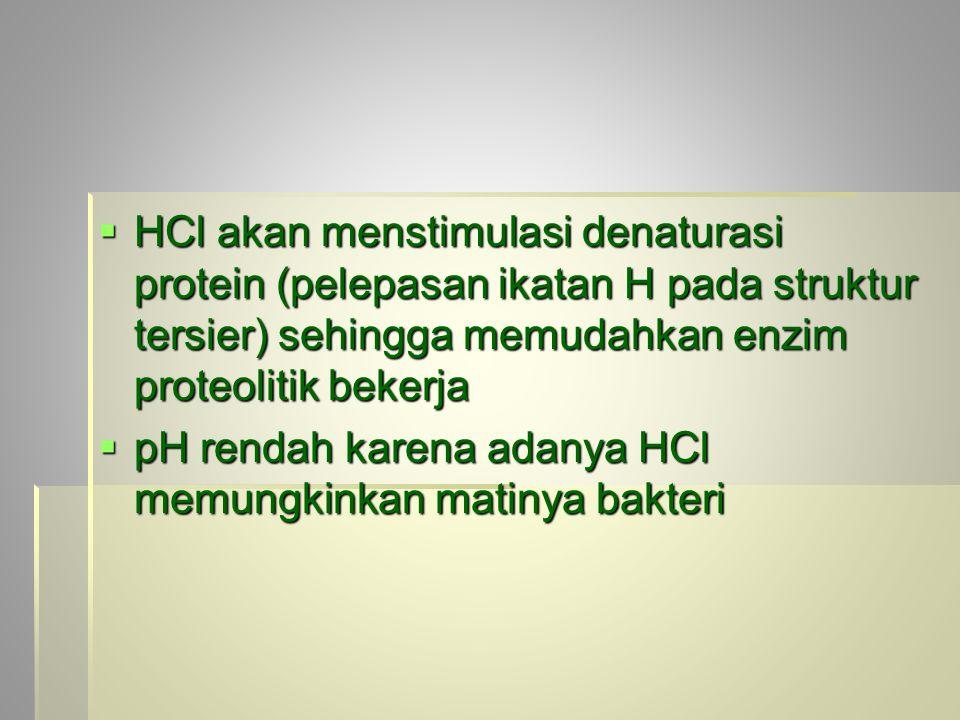 HCl akan menstimulasi denaturasi protein (pelepasan ikatan H pada struktur tersier) sehingga memudahkan enzim proteolitik bekerja