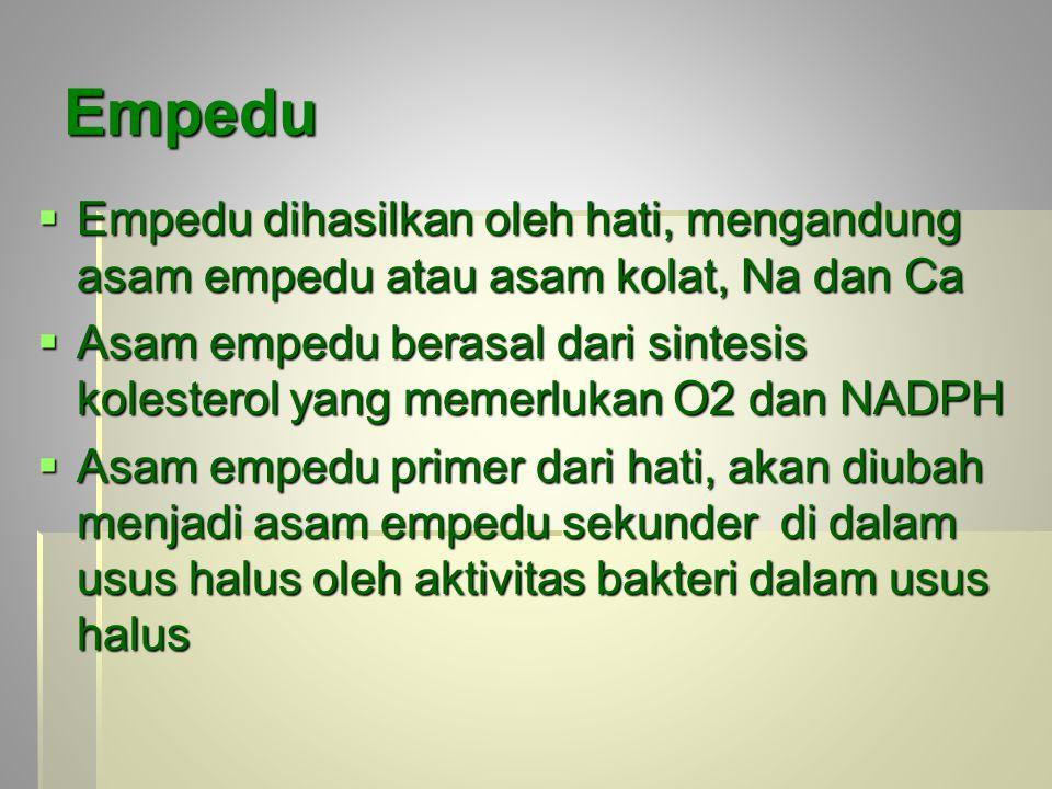 Empedu Empedu dihasilkan oleh hati, mengandung asam empedu atau asam kolat, Na dan Ca.