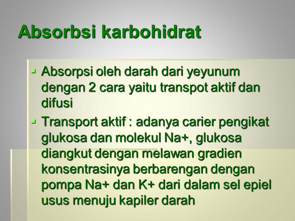 Absorbsi karbohidrat Absorpsi oleh darah dari yeyunum dengan 2 cara yaitu transpot aktif dan difusi.