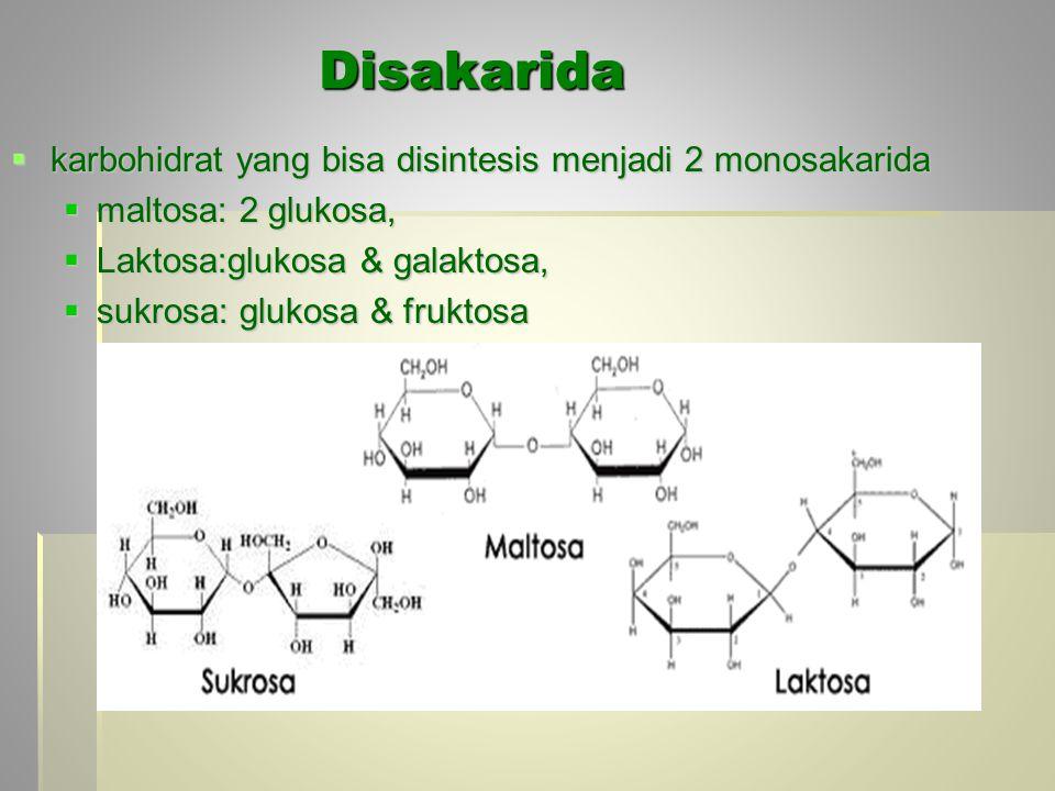 Disakarida karbohidrat yang bisa disintesis menjadi 2 monosakarida