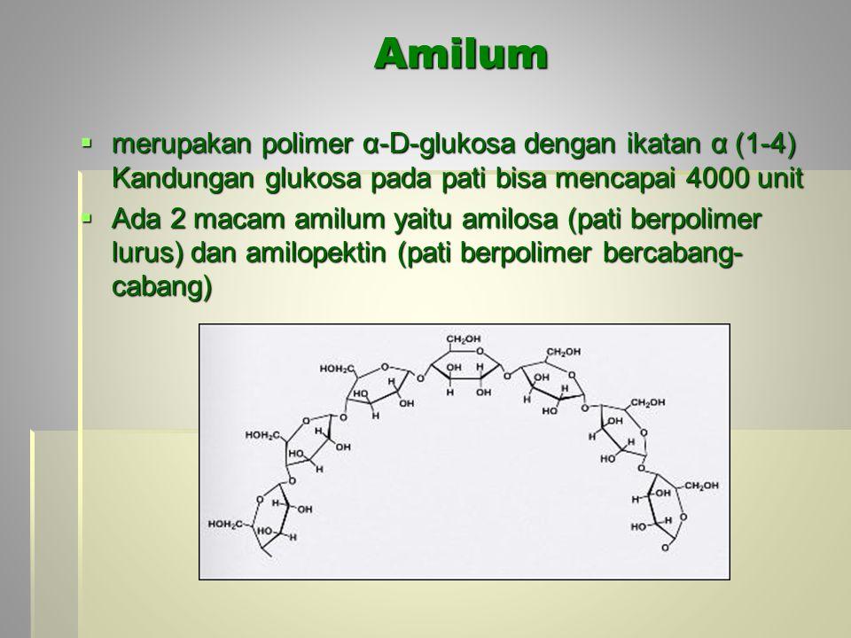 Amilum merupakan polimer α-D-glukosa dengan ikatan α (1-4) Kandungan glukosa pada pati bisa mencapai 4000 unit.