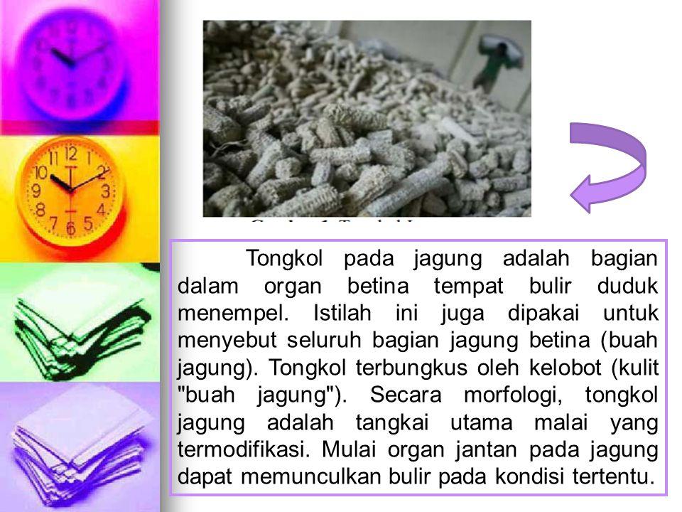 Tongkol pada jagung adalah bagian dalam organ betina tempat bulir duduk menempel.