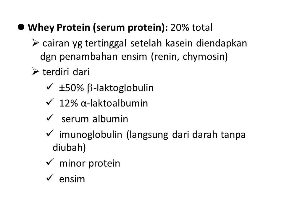 Whey Protein (serum protein): 20% total
