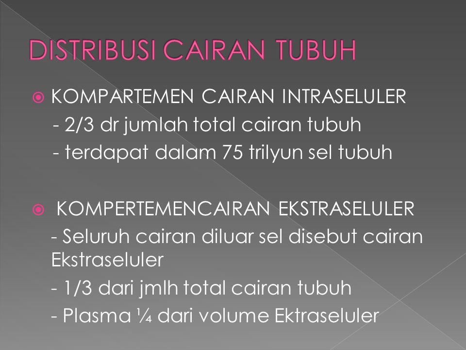 DISTRIBUSI CAIRAN TUBUH