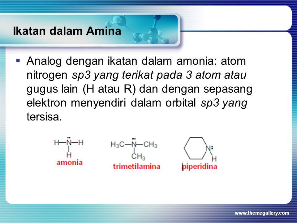 Ikatan dalam Amina