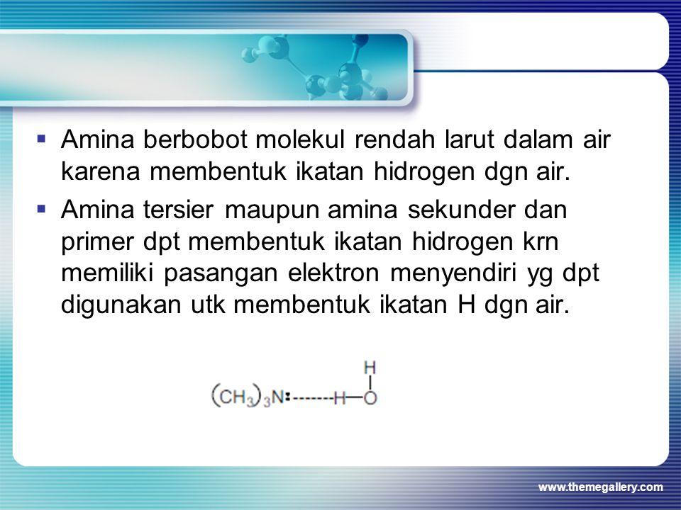 Amina berbobot molekul rendah larut dalam air karena membentuk ikatan hidrogen dgn air.