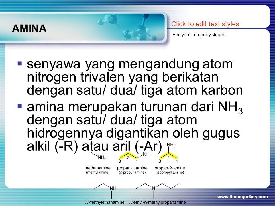 AMINA Click to edit text styles. Edit your company slogan.