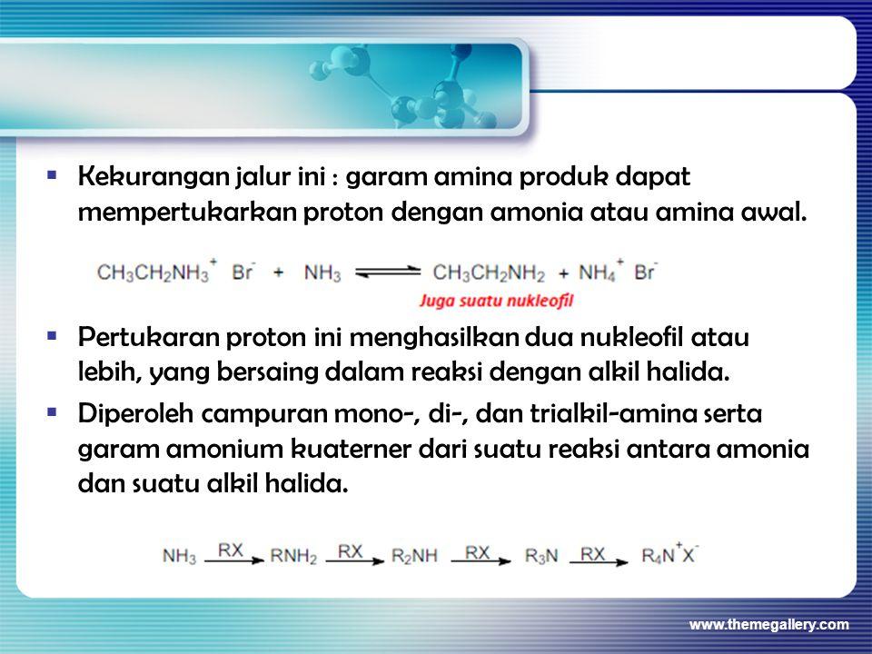 Kekurangan jalur ini : garam amina produk dapat mempertukarkan proton dengan amonia atau amina awal.