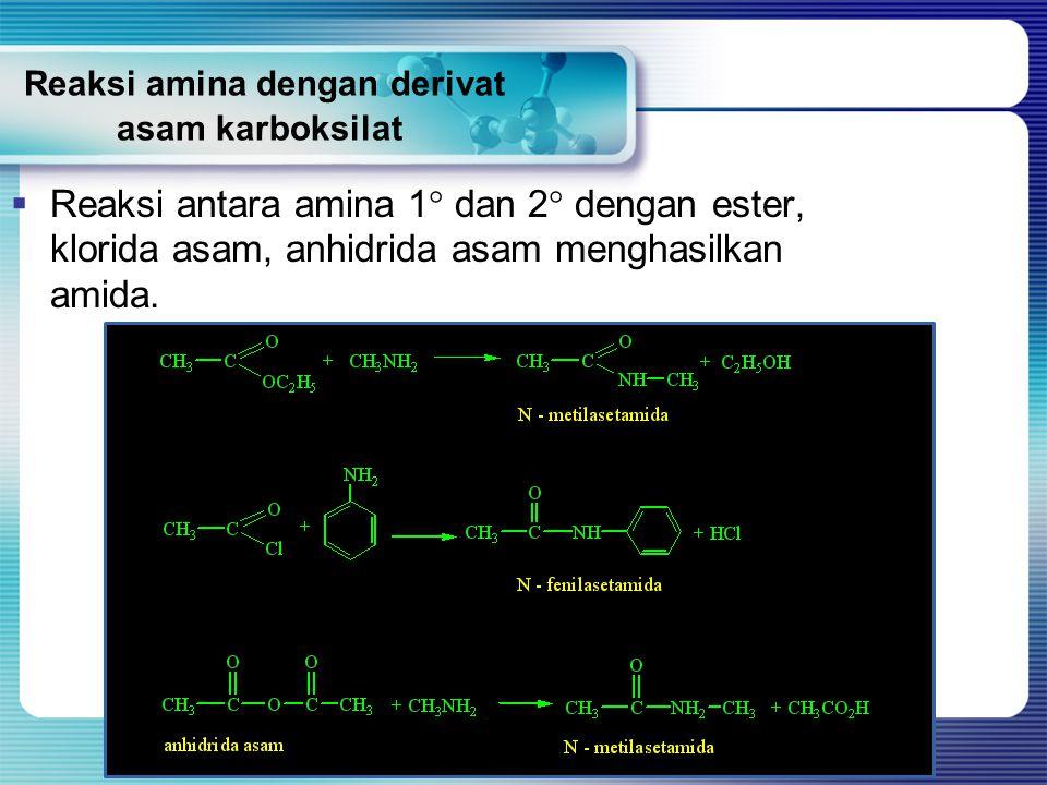 Reaksi amina dengan derivat asam karboksilat