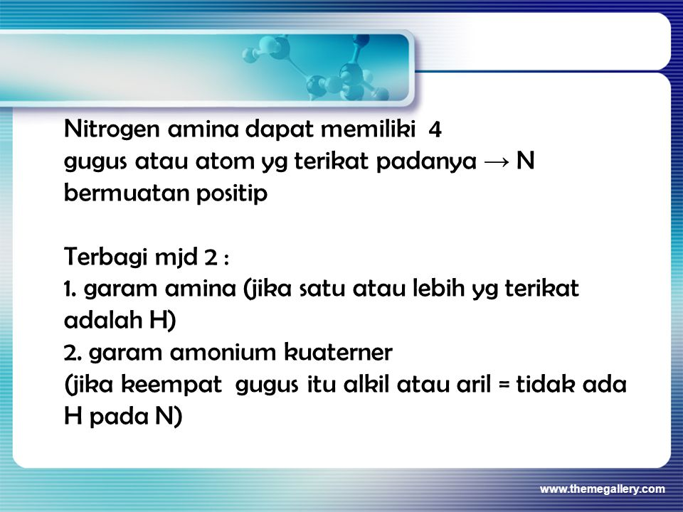 Nitrogen amina dapat memiliki 4
