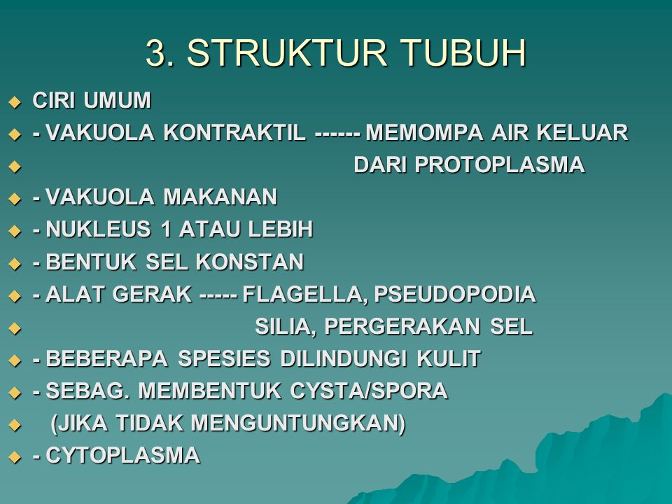 3. STRUKTUR TUBUH CIRI UMUM