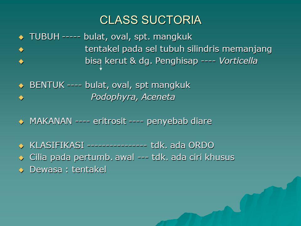 CLASS SUCTORIA TUBUH ----- bulat, oval, spt. mangkuk