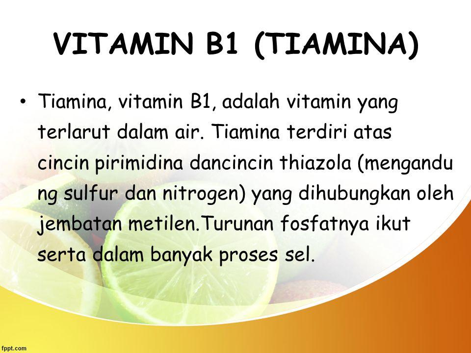 VITAMIN B1 (TIAMINA)