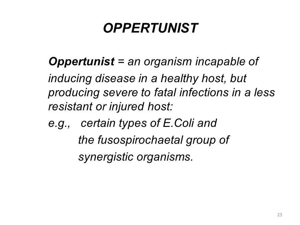 OPPERTUNIST