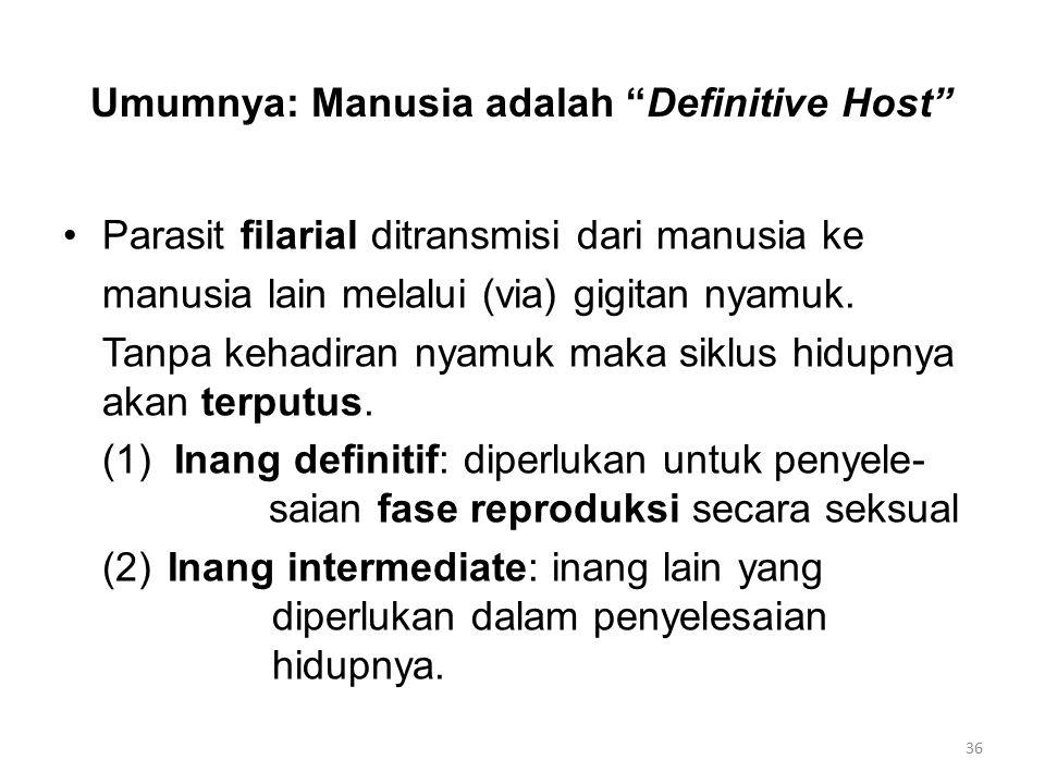Umumnya: Manusia adalah Definitive Host