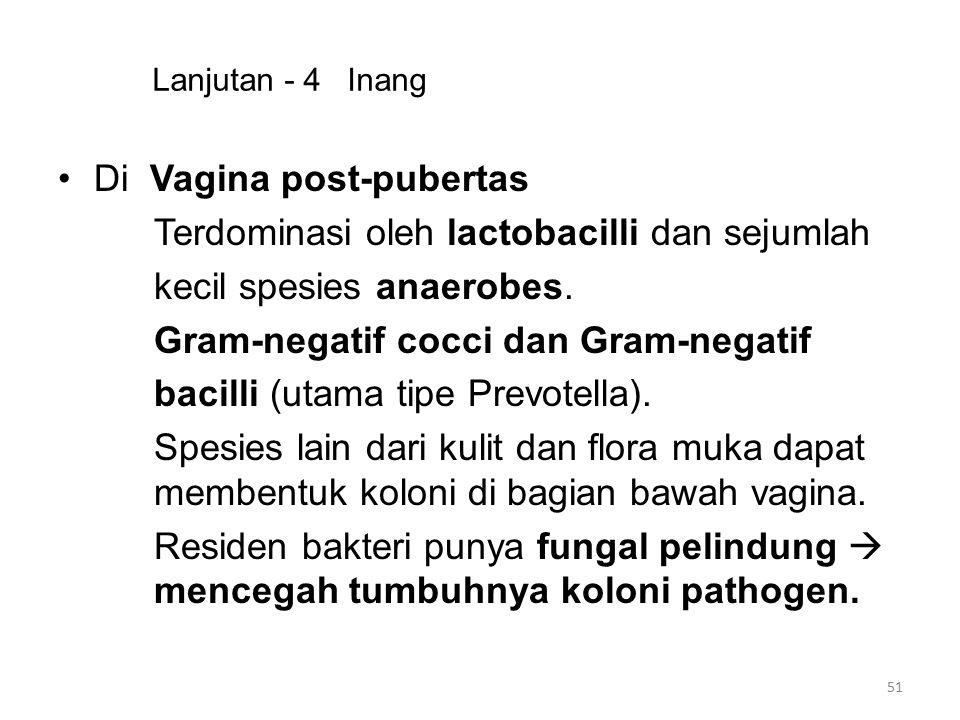 Di Vagina post-pubertas Terdominasi oleh lactobacilli dan sejumlah